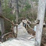 Cedar Cottage Entrance