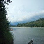 Un ramo del fiume Napo