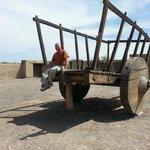 Sitting atop wagon