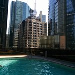 CN Tower in view from Pool