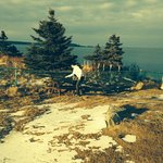 Taken at Quoddy April 2014.  Sorry, there was an odd filter on it!
