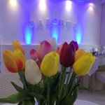 Sabores with tulips. Sabores team on Mother's Day. X