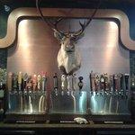 21 opções de cervejas especiais