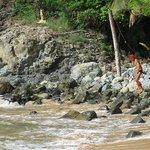 Praia do Cachorro e Cachorros