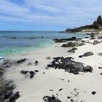 The coral strewn beach at Boca Catalina