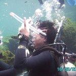 Skill sets with jennyfish