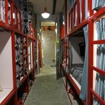 Large mixed dorm room with cubby style bunks