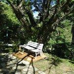 Área para descanso no jardim da pousada