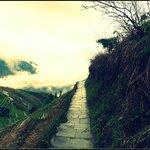 lovely trail