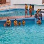 nado con delfines basico