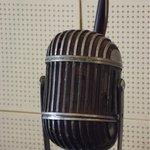 Microphone detail