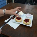 Devonshire tea and scones at Paynesville