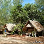 Bamboo & thatch bungalows