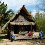 Bamboo & thatch bungalow