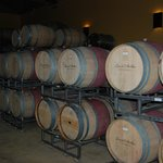 Wine tour in Napa Valley