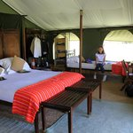 Honeymoon Tent