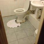 Tired bathroom, cracks in floor tiles
