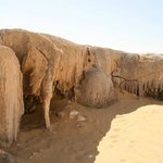 Desert Treasures Tours - Day Tours