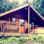 Our Beautiful Lodge - Foxglove