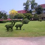 inspiring garden at the Centara Grand Huahin