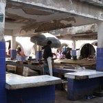 Marché aux poisson - Essaouira
