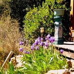 terrasse du chalet japon