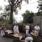 Традиция Мадейры -катание на санях