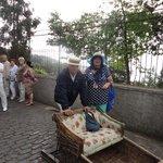 Катание на санях-древняя традиция