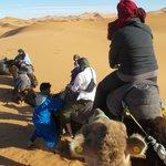 Kamelausflug in die Wüste