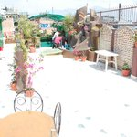 Roof top garden at sunny day