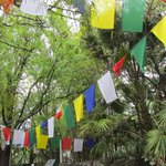 Prayer flags greet you as you arrive.