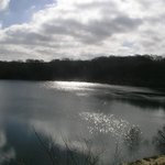 Meeth Quarry Nature Reserve