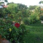 jardin Mana Nui