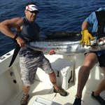 "91"" sailfish"