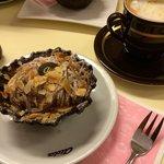 Chestnut Dream