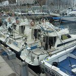 Fishing Charters & Tours