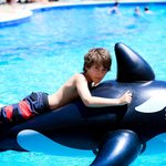 enjoying the pool with inflatable left by others
