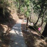 80 meter path leading down to the resort