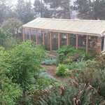 View of the greenhouse and garden from the Sea Lion room.