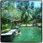 Lovely Green Pool