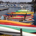 Kayaks lined up and ready to go.