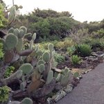 Prickly Gardens!  But also lots of fun for the kids.  Not sure why they are closed so early in t