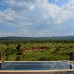 Lodge pool with view of waterhole