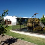 We have a well maintained garden with lots of birdlife