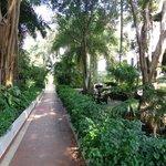 Jardines interior