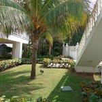 Jardin interior del hotel