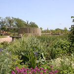The beautiful sensory garden - for a reflective walk or to look at our volunteers flower plantin