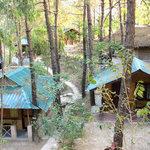 Parkwoods has 26 quaint cottages amidst pine trees.