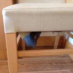 État des chaises