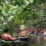 Kayaking mangroves